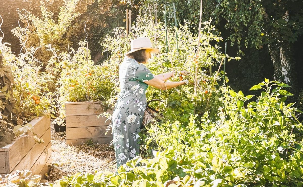 elizabeth-dans-le-jardin